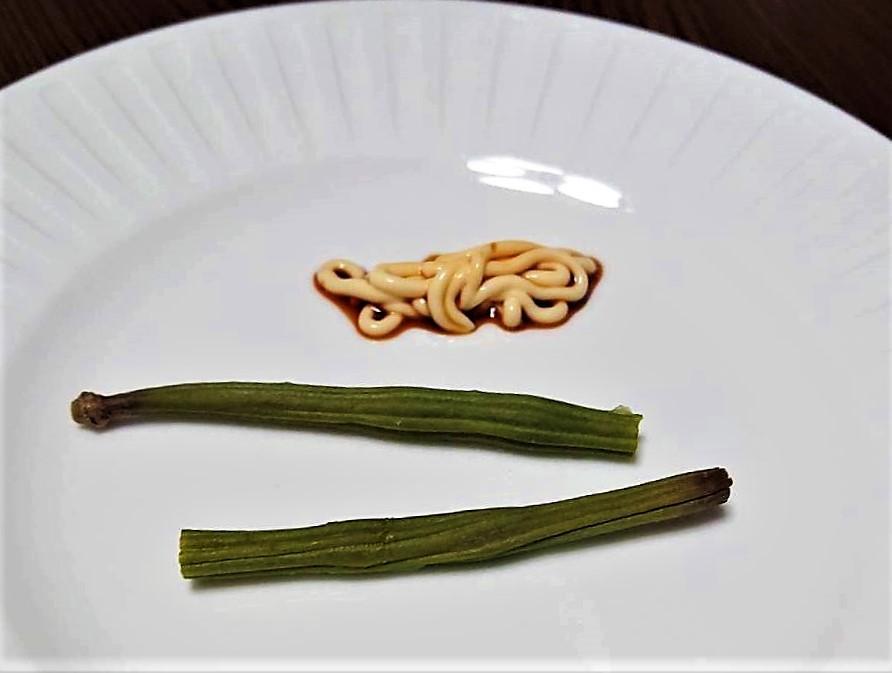 百花(モリンガ)のサヤ料理に挑戦しました! その2