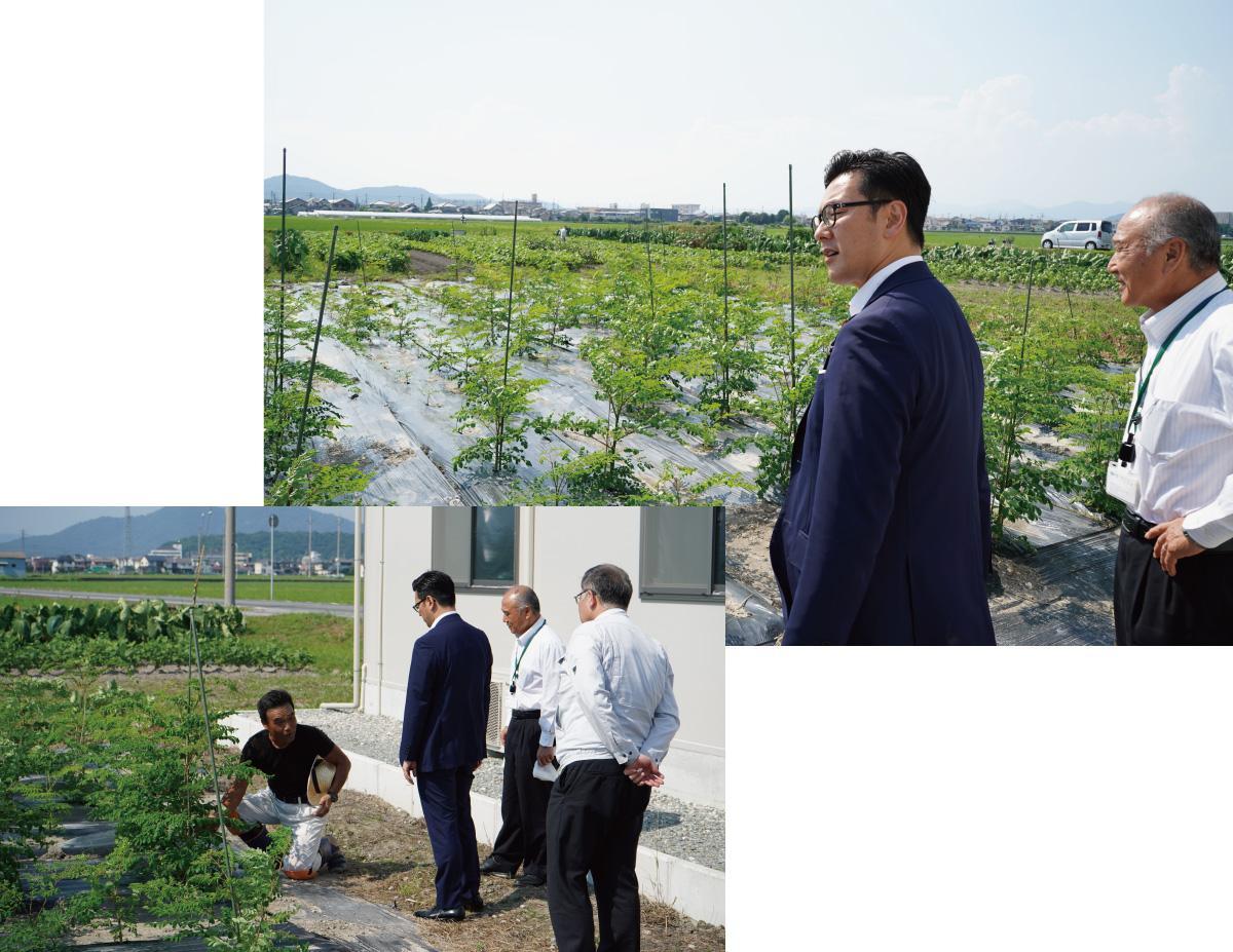 濱村農林水産大臣政務官が来訪されました!② その1